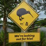 La Nuova Zelanda e le sue stranezze