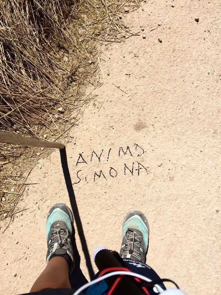 Animo Simona